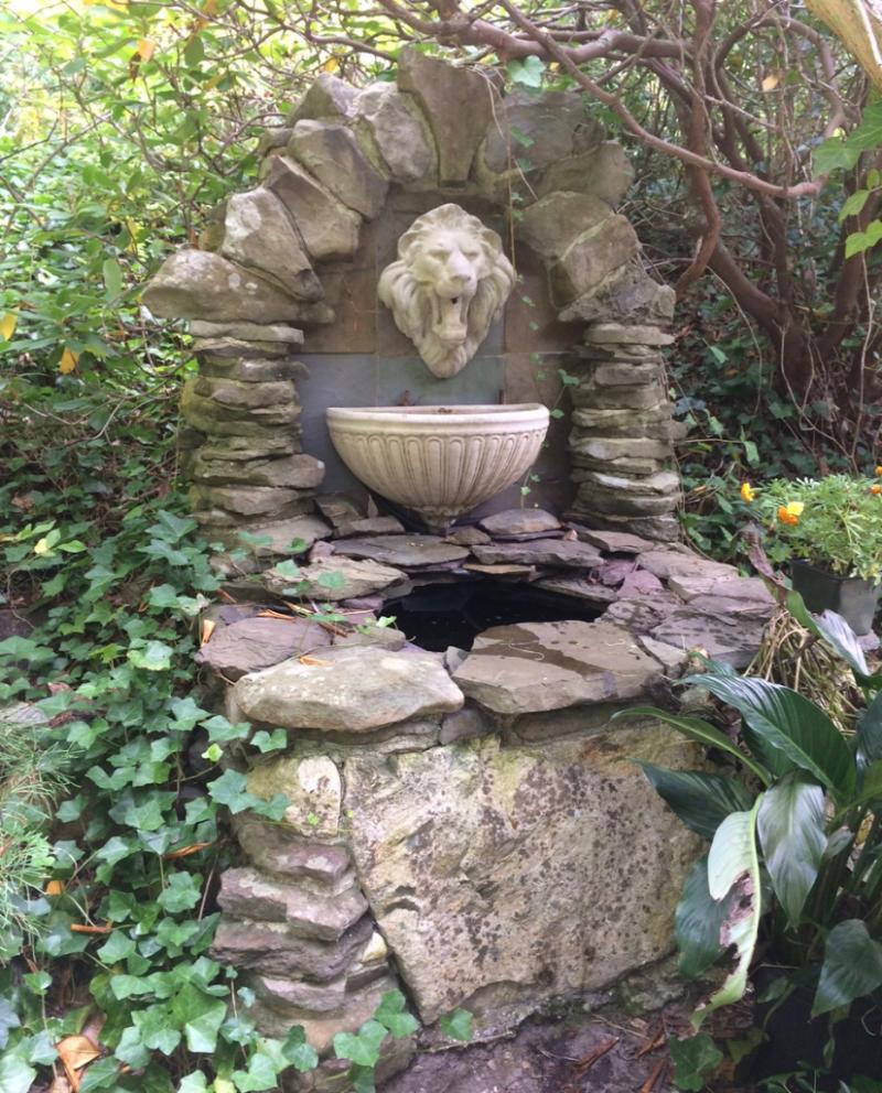 Lion Fountain Laura Baksa