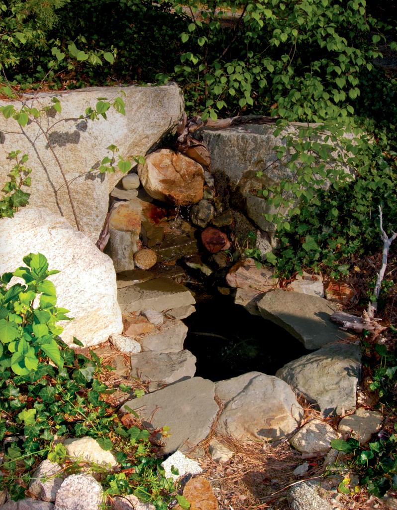 Nina rock pool
