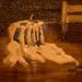 SPIRITUALITY  _Tears_ oil  gesso on canvas  8_x12_ 2002 Rosa Maria Pimenta   (3)
