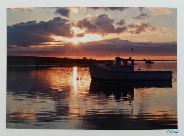 Fish Pier—Chatham